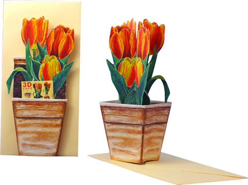 3D Flower Pot Card Tulip