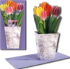 3D Flower Pot Card colorful Tulips